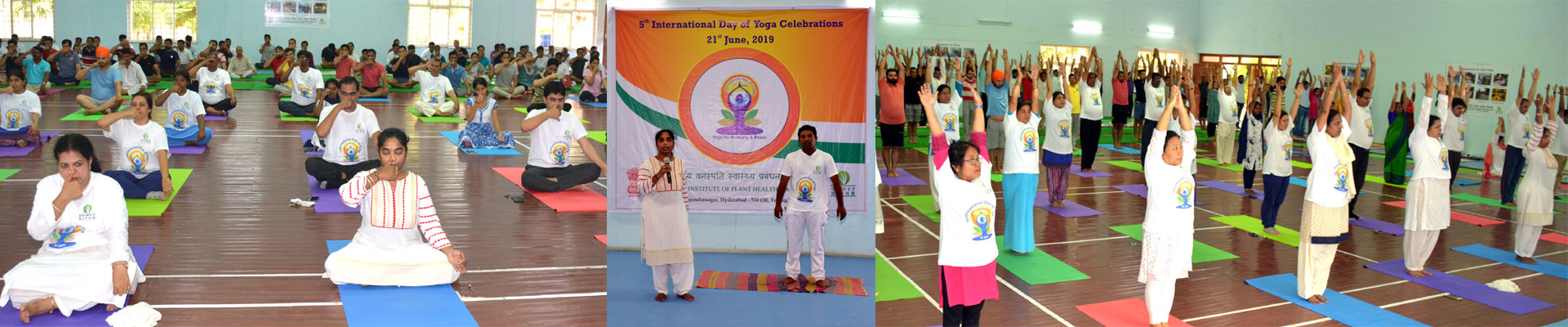 International Day of Yoga at NIPHM